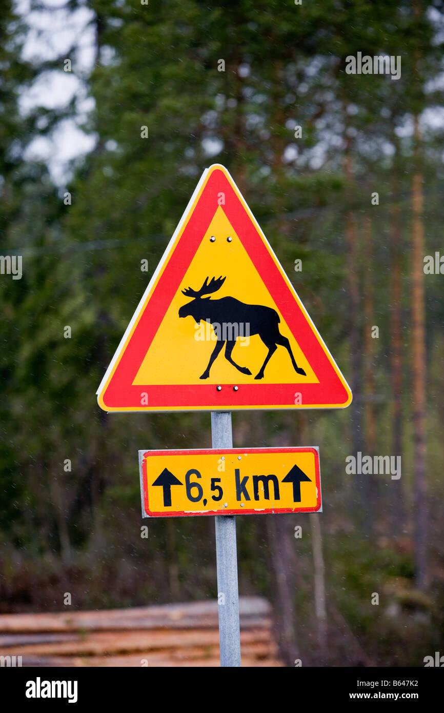 Finlandia, Kuhmo, cartello stradale che avverte per attraversamento alci. Immagini Stock