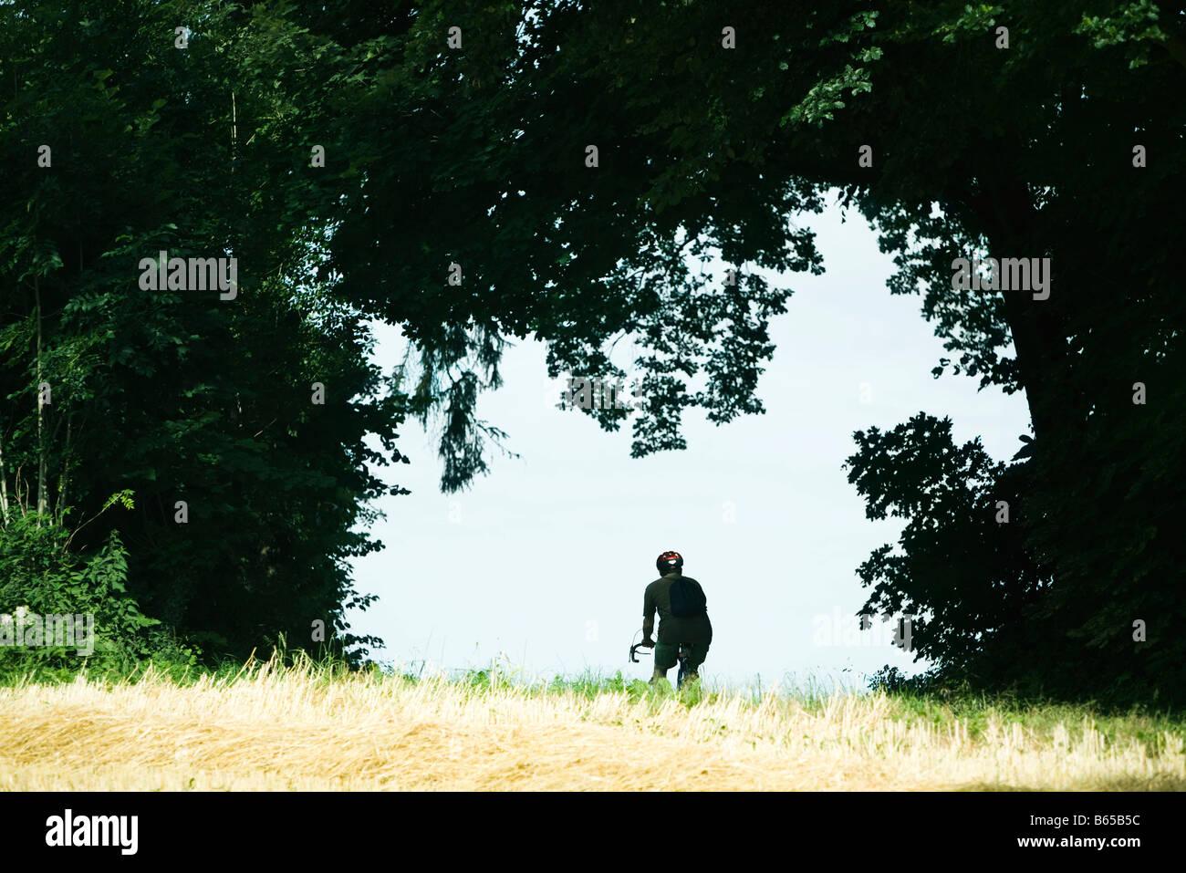 Ciclista pedalando attraverso tree archway Immagini Stock