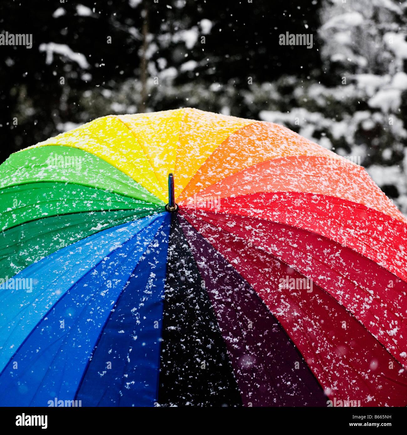 Rainbow brolly nella neve. Immagini Stock
