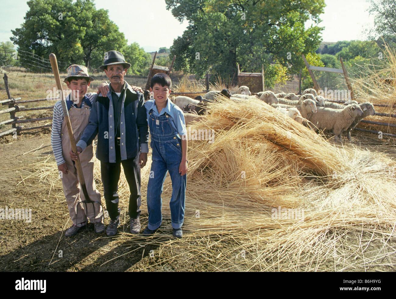 Questo anziano uomo ispanico con un forcone e i suoi due figli grande cura per un piccolo allevamento di capre e Immagini Stock