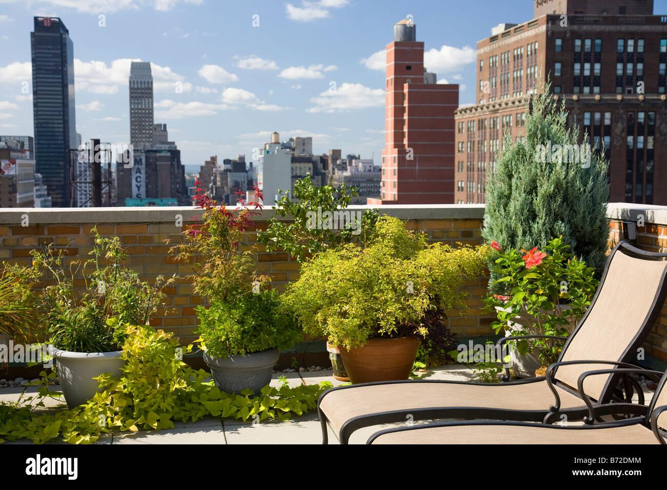 Urbano giardino sul tetto, NYC Immagini Stock
