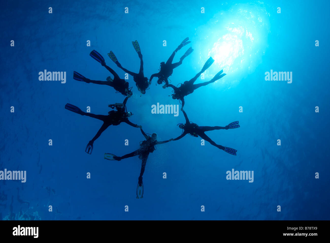 Subacquei formando una stella, retroilluminazione dal sole, blu, Hurghada, Egitto, Mare Rosso, Africa Immagini Stock