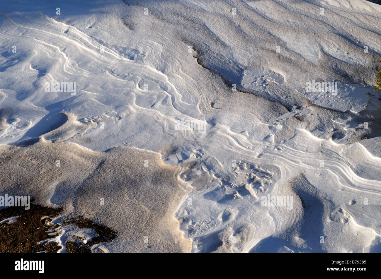 Modelli di strati di neve. Big Sky, Montana, USA. Immagini Stock