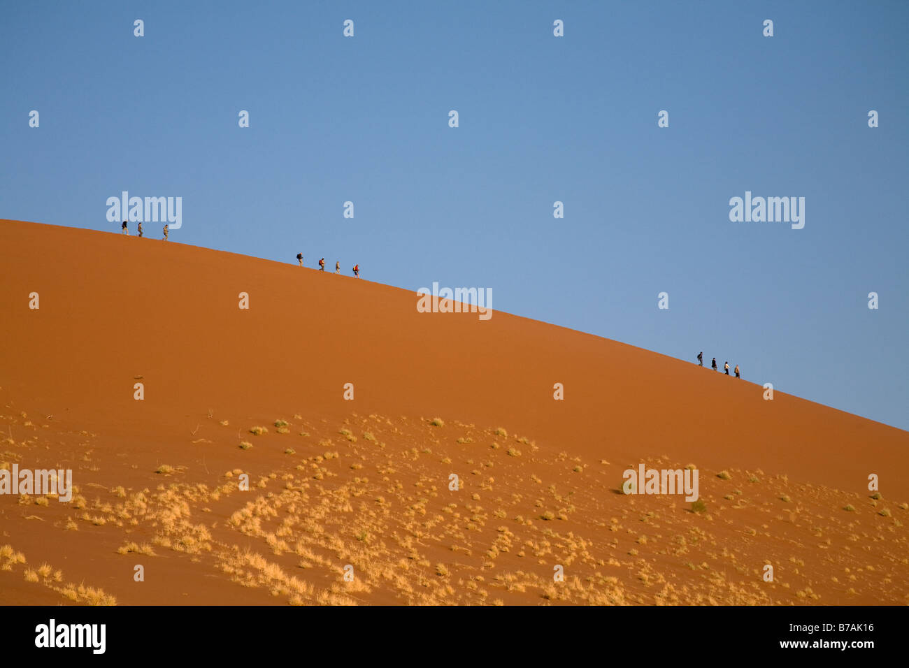 La gente camminare lungo la cresta delle Dune 45 in Sossusvlei in Namibia, un profondo cielo blu come sfondo. Foto Stock