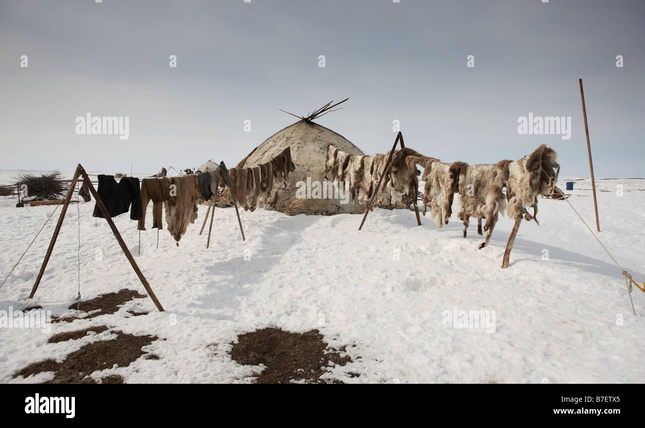 Yupic tenda e pelli di renne, Kanchalan situato nel Chukot Regione autonoma, Siberia, Russia Immagini Stock