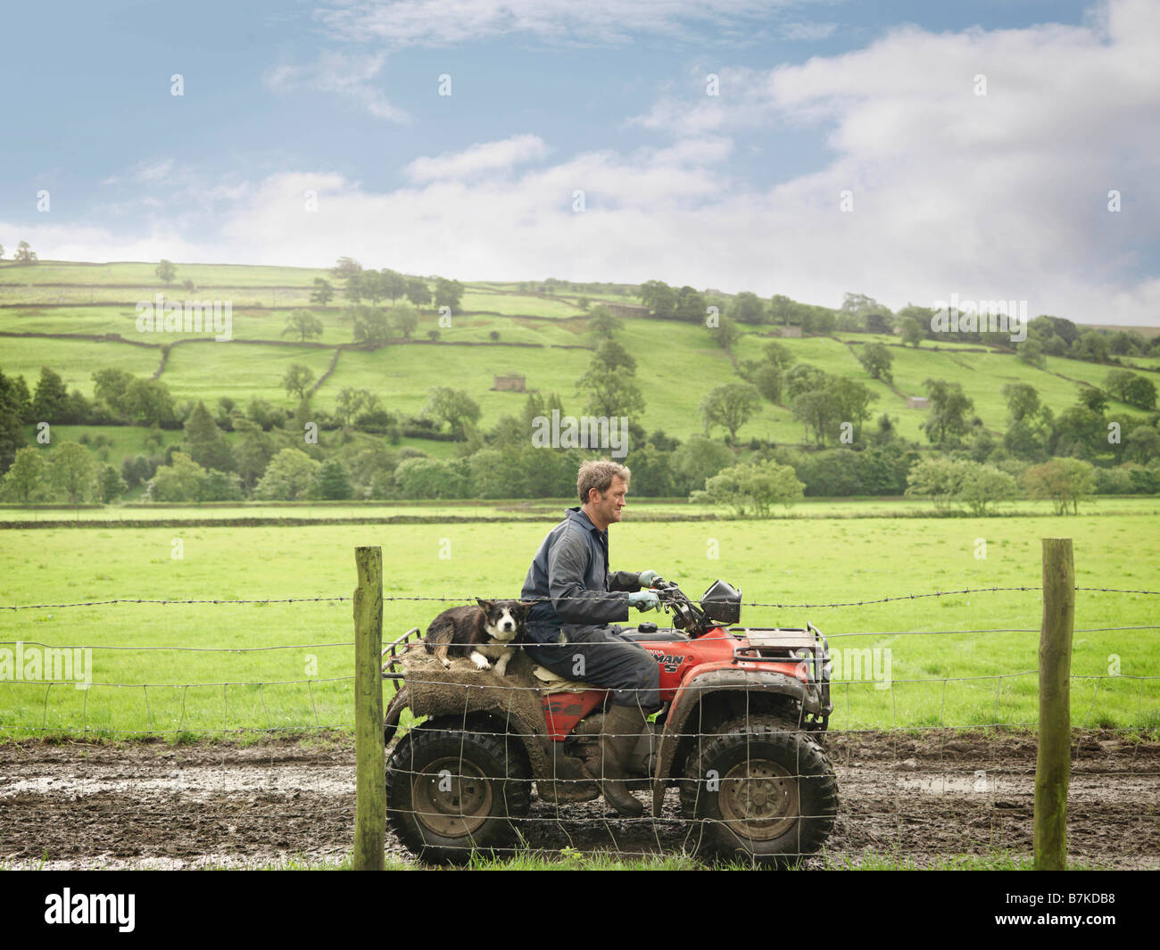 L'agricoltore e cane sul trattore Immagini Stock