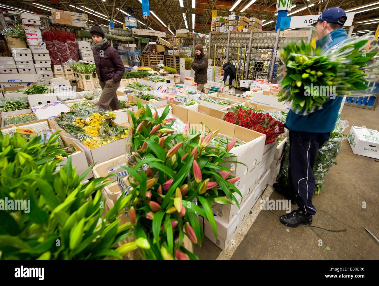 Un uomo guarda attraverso una selezione di fiori a Londra è di nuovo Covent Garden Flower Market Londra UK. Foto Stock