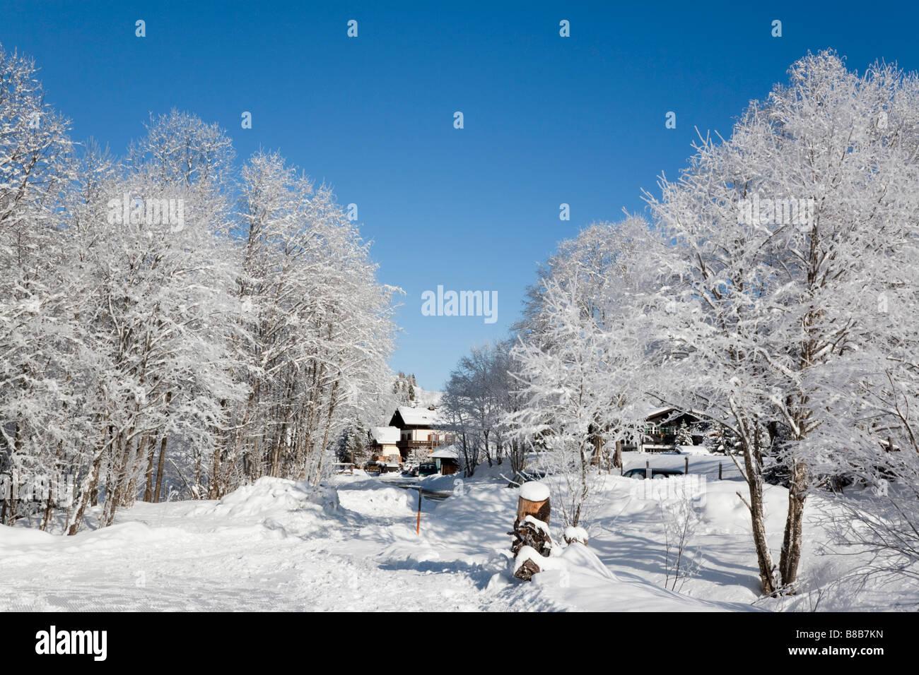 Rauriser Bucheben Sonnen Valley Austria Europa gennaio neve invernale scena con alberi coperti di bianco brina dopo Immagini Stock
