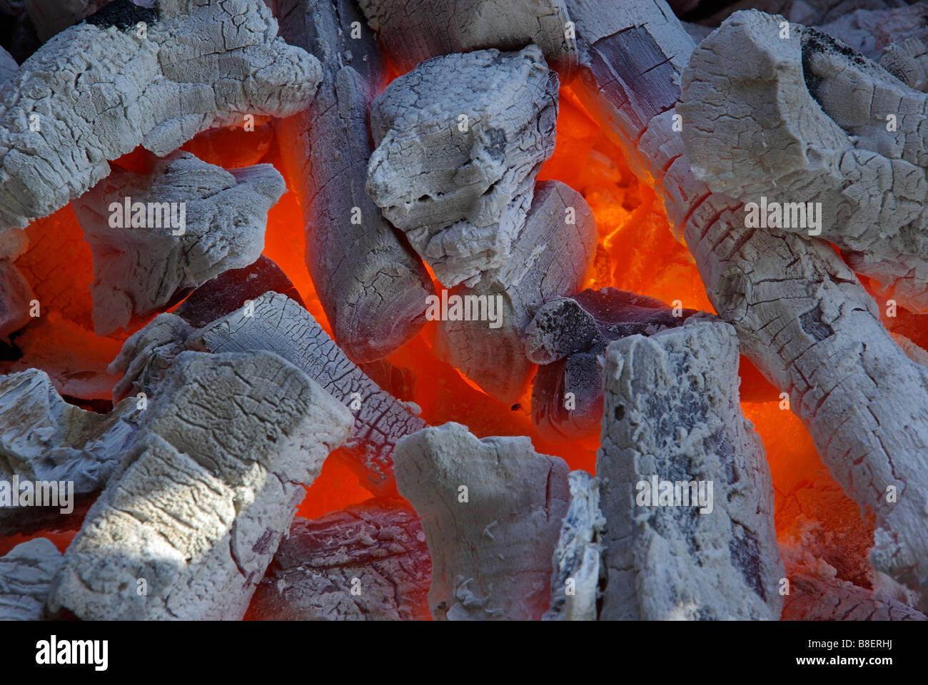 Carbone Holzkohle 16 Immagini Stock