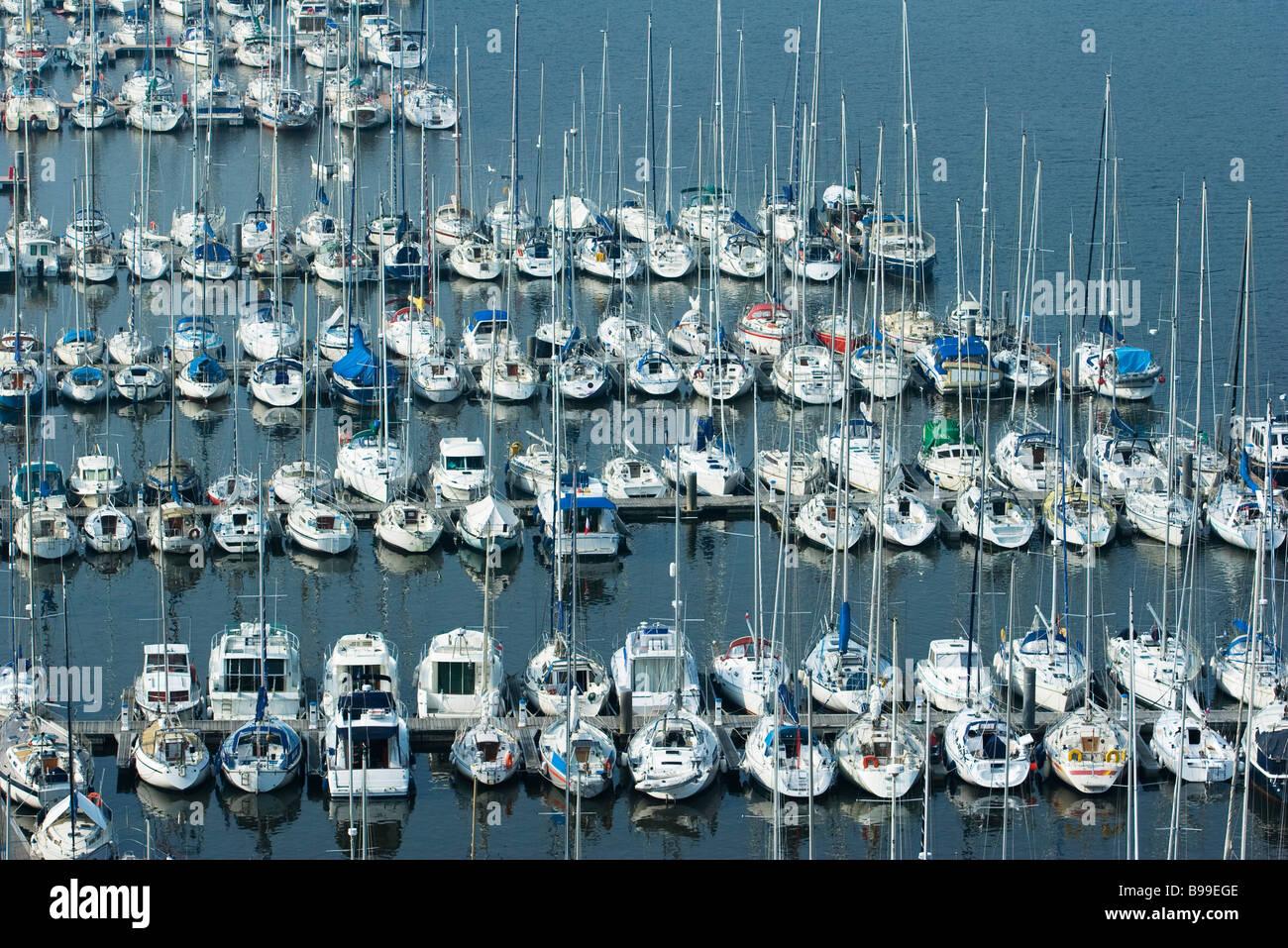 Barche ormeggiate nel porto turistico, Brittany, Francia Immagini Stock