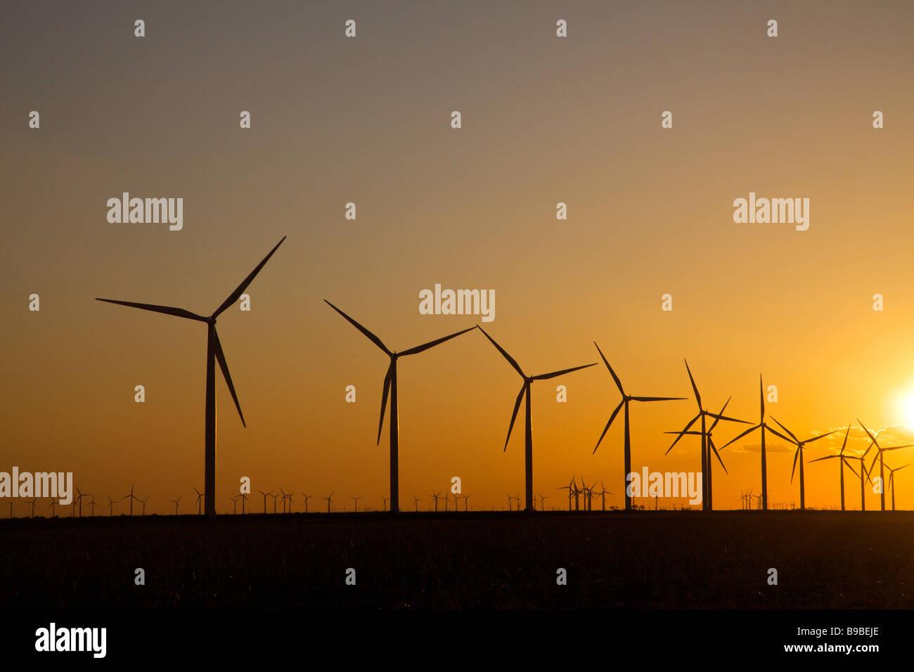 Turbine eoliche che generano elettricità a cava di cavallo fattoria eolica Nolan Texas al tramonto. Immagini Stock