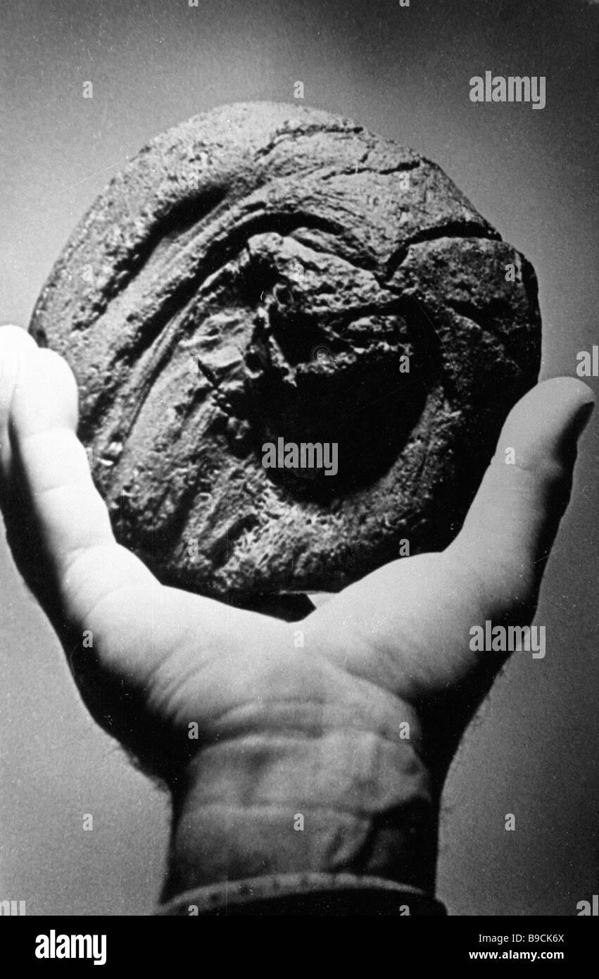 Impactite scoria vetrosa come scopo probabilmente formate da roccia fusa mediante l'impatto di una meteora è Immagini Stock