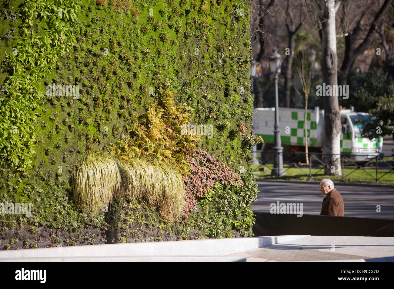 Vertical garden by patrick blanc immagini vertical garden by patrick blanc fotos stock alamy - Giardino verticale madrid ...