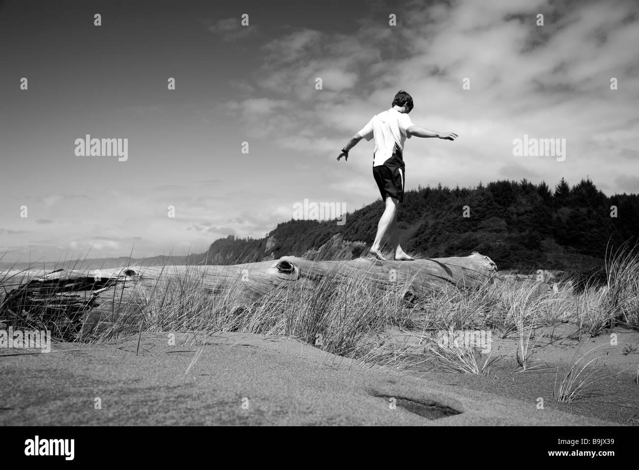 Un uomo saldi su un registro vicino alla spiaggia di Redwoods National Park, California. Immagini Stock