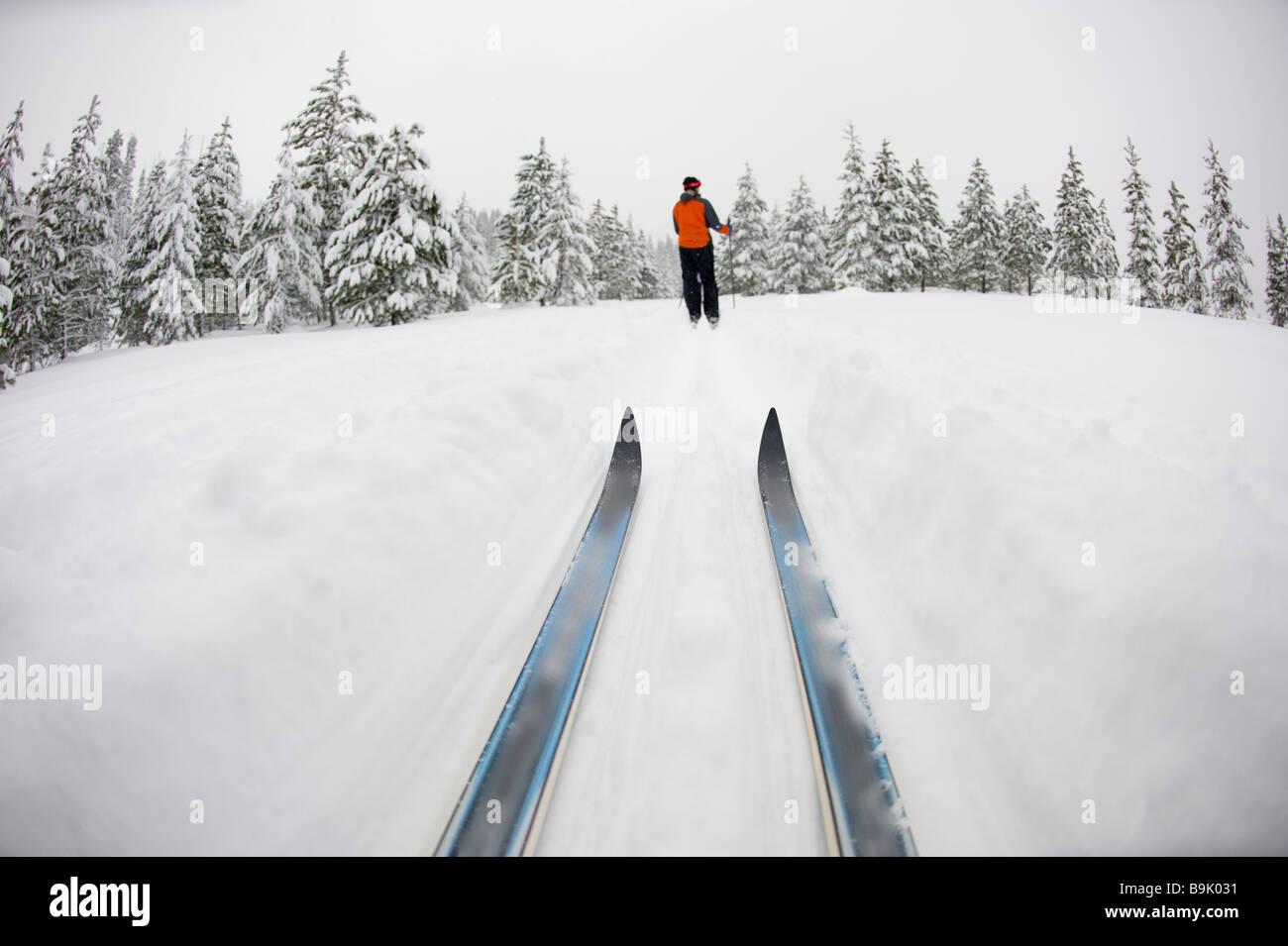 Basso angolo vista di sci di fondo consigli e una giovane donna lo sci nordico su un cross country prova nella neve Immagini Stock