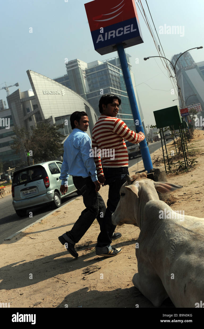 Due indiani passato di attraversamento di una mucca in strada a Gurgaon Haryana, India con HQ di Western multi-cittadini Immagini Stock