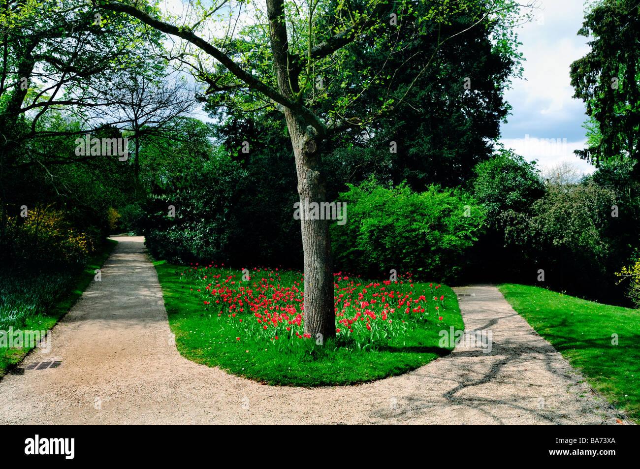 Parigi Francia, parco urbano, paesaggio, 'fork in the road' in 'Bagatelle Giardino scenario Immagini Stock