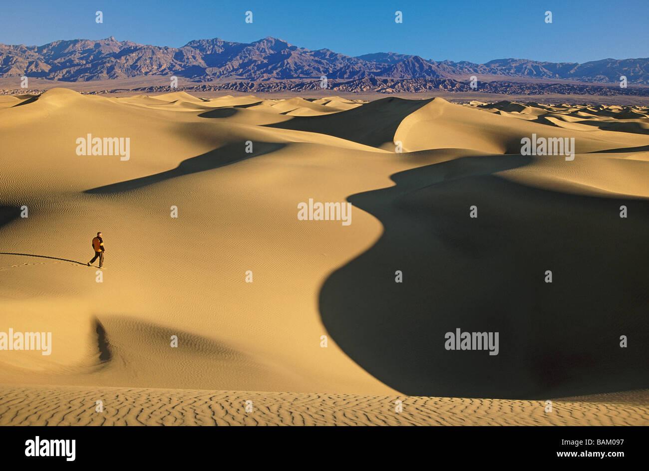 Escursionista in mesquite dune di sabbia Foto Stock