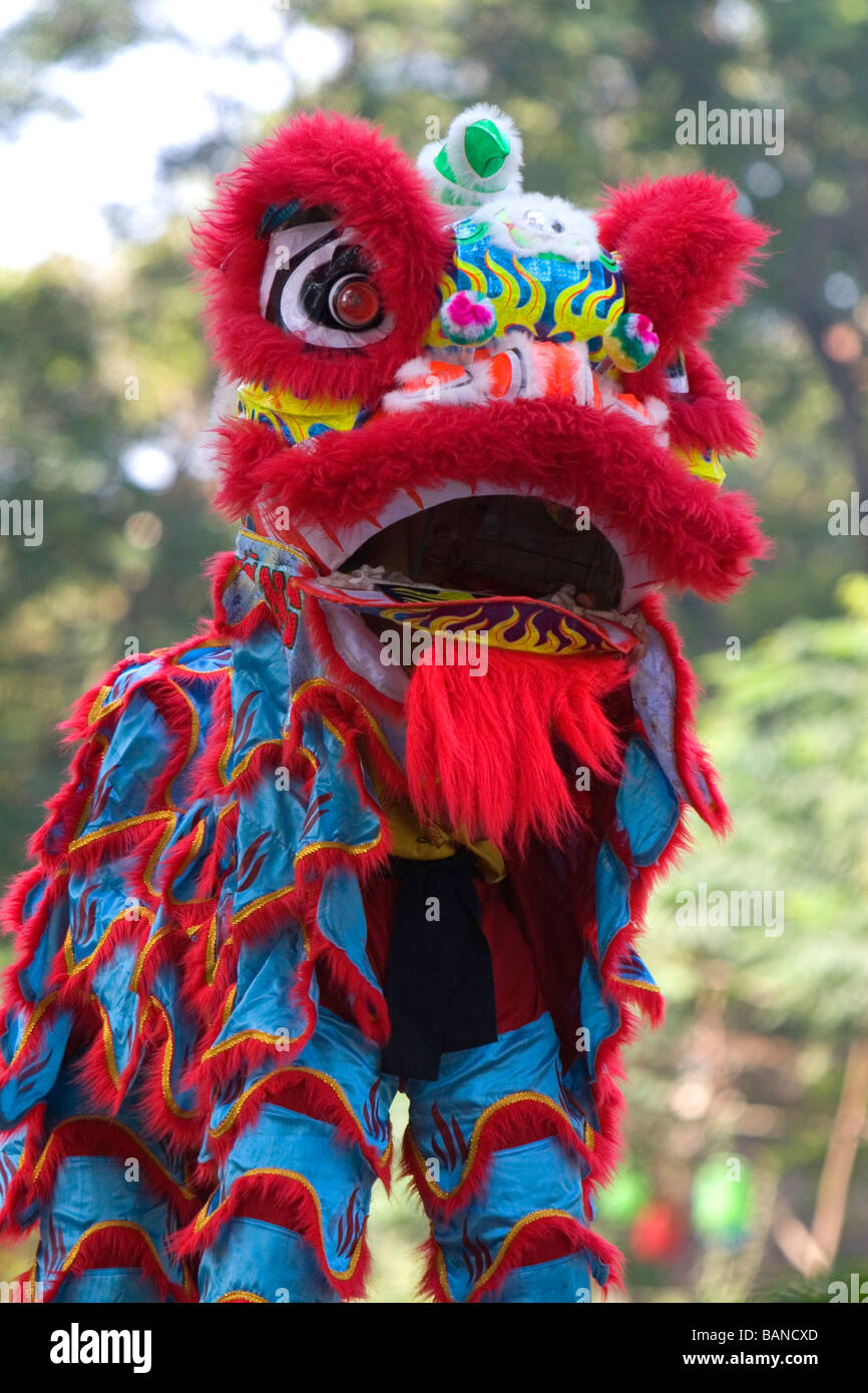 Il vietnamita dragon dance durante il Tet capodanno nuovo anno lunare festeggiamenti in Ho Chi Minh City Vietnam Immagini Stock