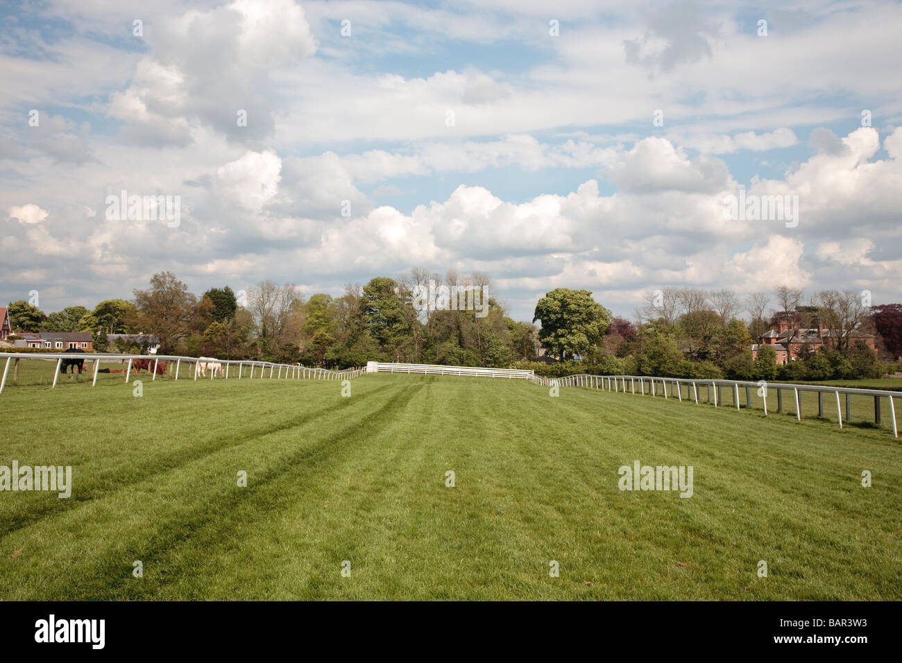 Race Course Beverley Westwood, Beverley, East Yorkshire, Inghilterra, Regno Unito Immagini Stock