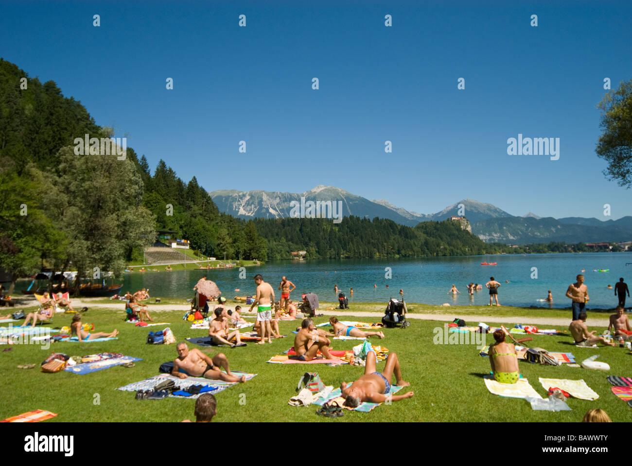 Grassy Lakeshore sul lago di Bled Immagini Stock