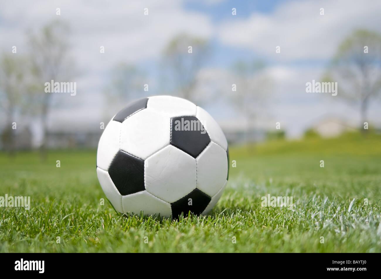 Pallone da calcio in erba campo Immagini Stock