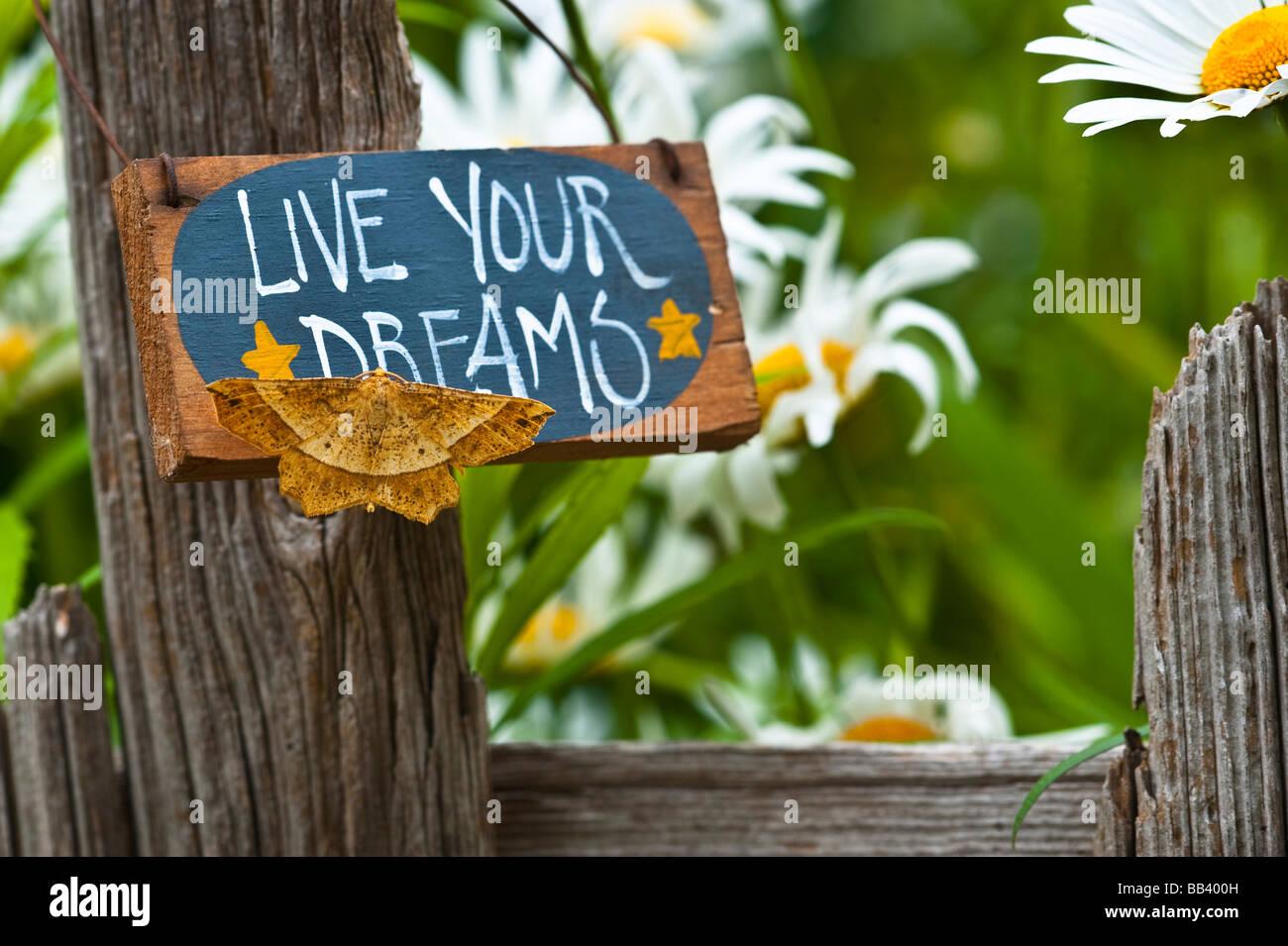 La tignola su giardino segno con margherite in background. Immagini Stock