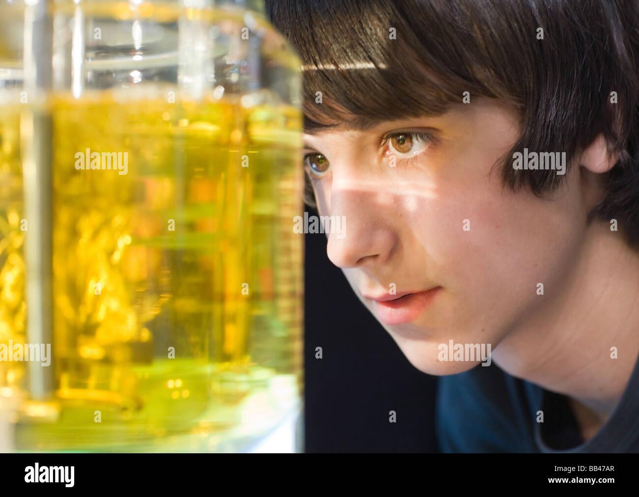 Studente alla classe chimica Immagini Stock