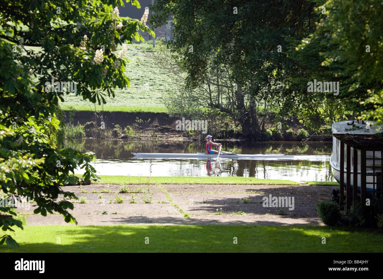Un inizio di mattina rower sul Fiume Tamigi a Wallingford, Oxfordshire, Regno Unito Immagini Stock