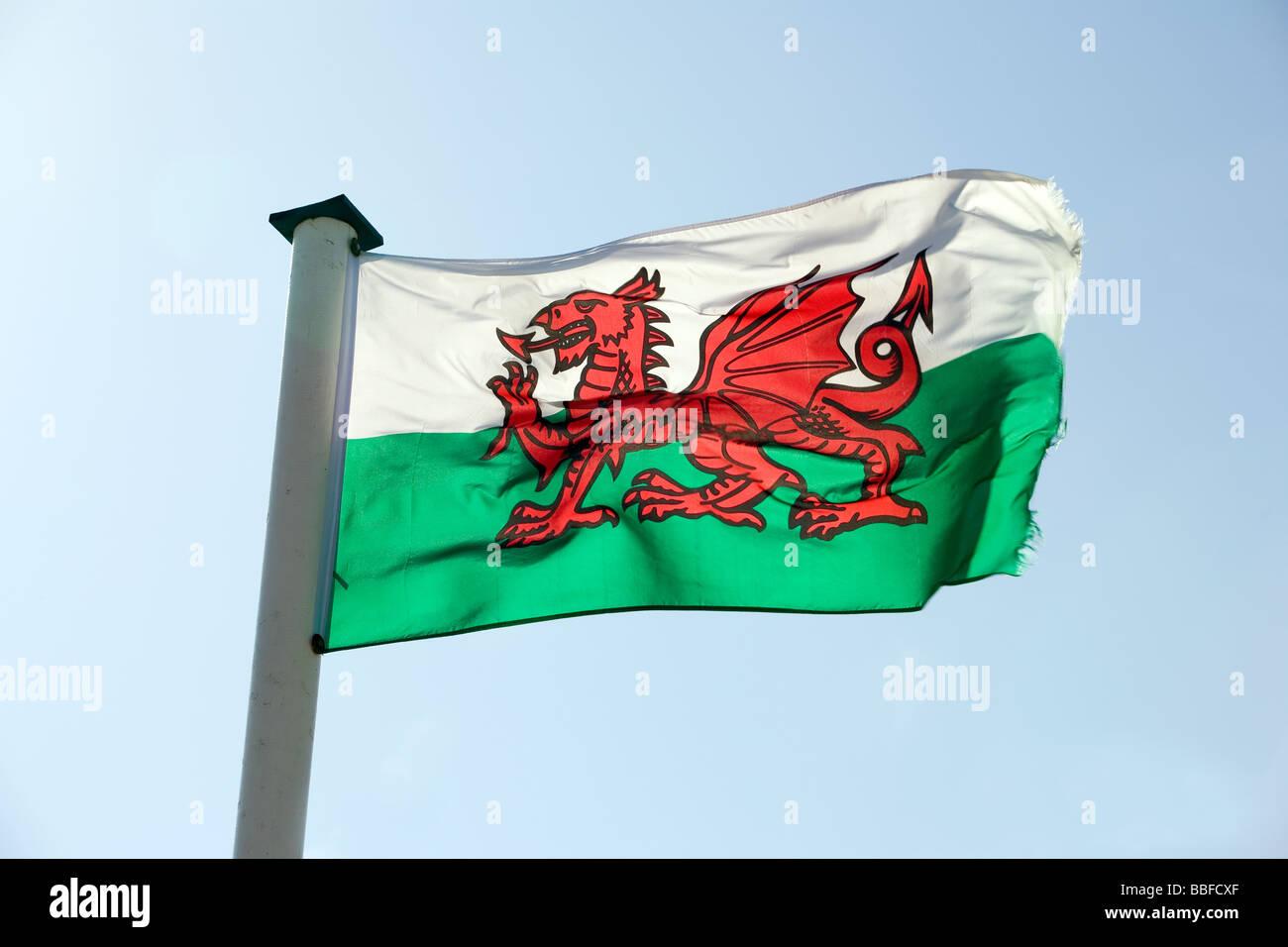 Il Welsh Bandiera Con Un Drago Rosso Su Un Gruppo Di Bianco E Lo