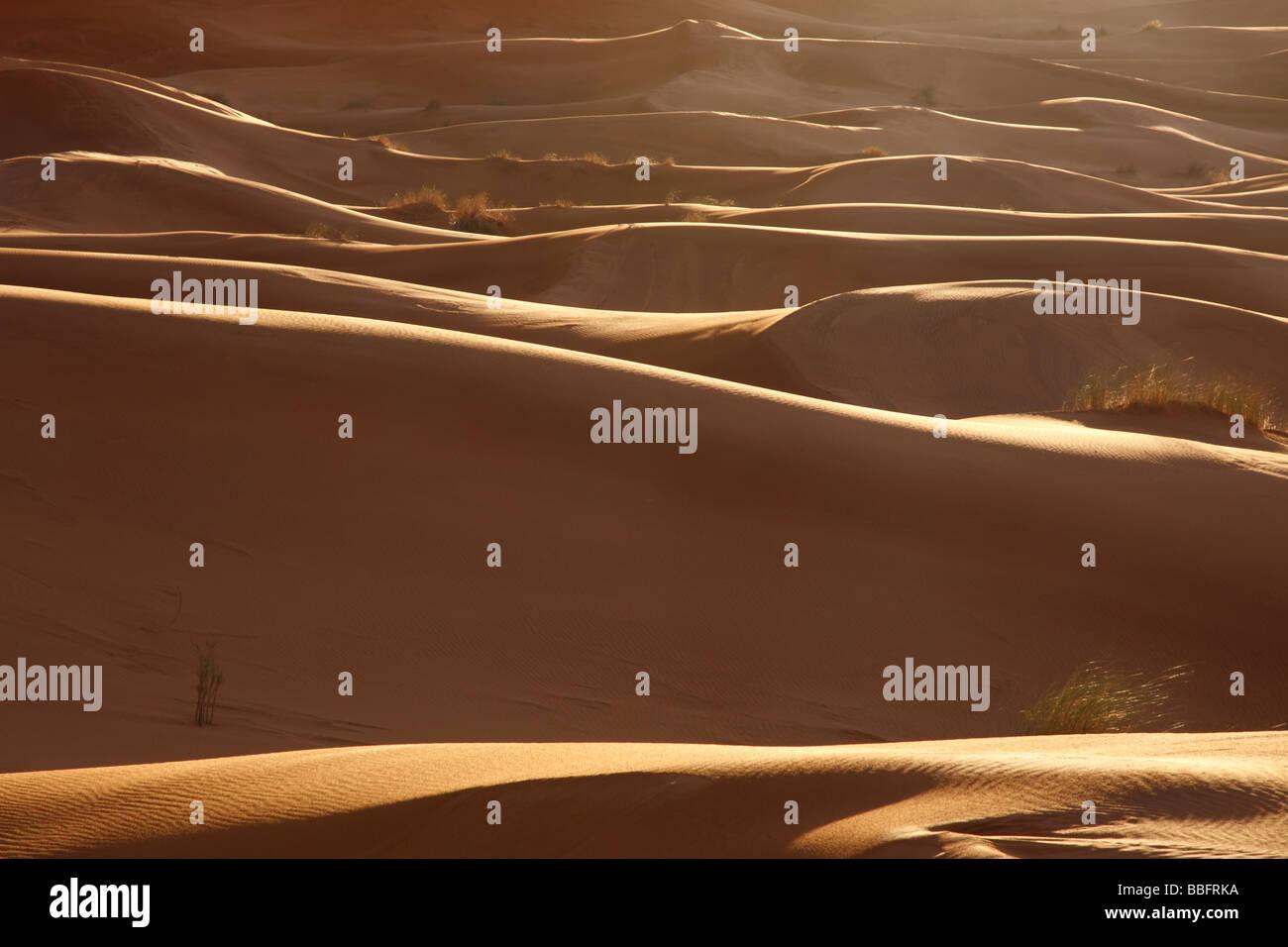 Africa, Nord Africa, Marocco deserto del Sahara, Merzouga Erg Chebbi, Alba Foto Stock