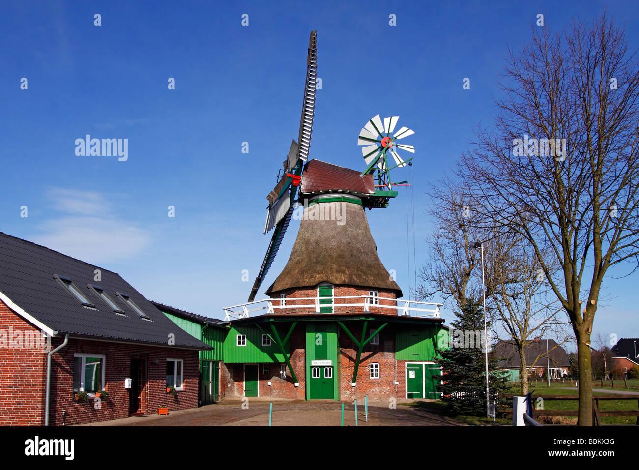 """Vecchio mulino a vento """"Gott mit uns - Dio con noi, in Eddelak costruito in tipico stile olandese, distretto Immagini Stock"""