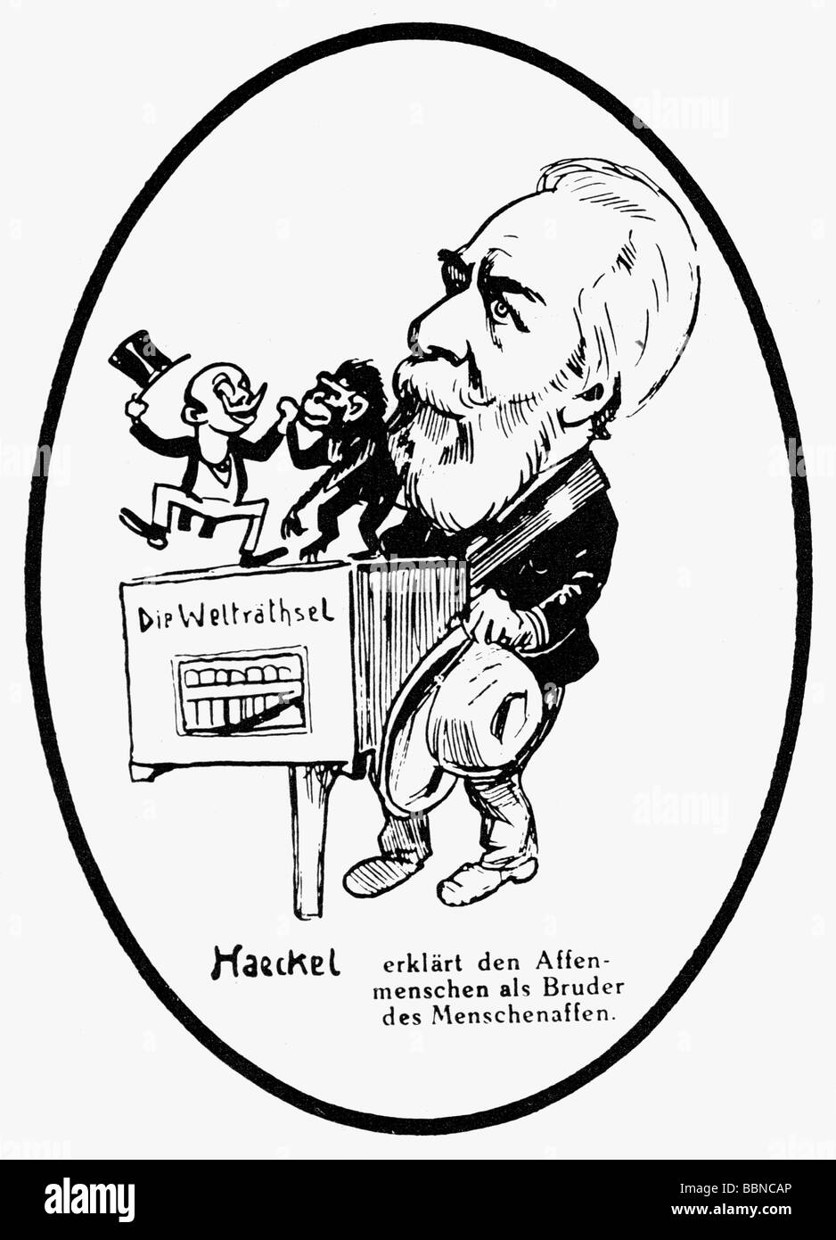 Haeckel, Ernst, 16.2.1834 - 9.8.1919, antropologo tedesco, caricatura 'Haeckel è spiegare il apeman come Immagini Stock