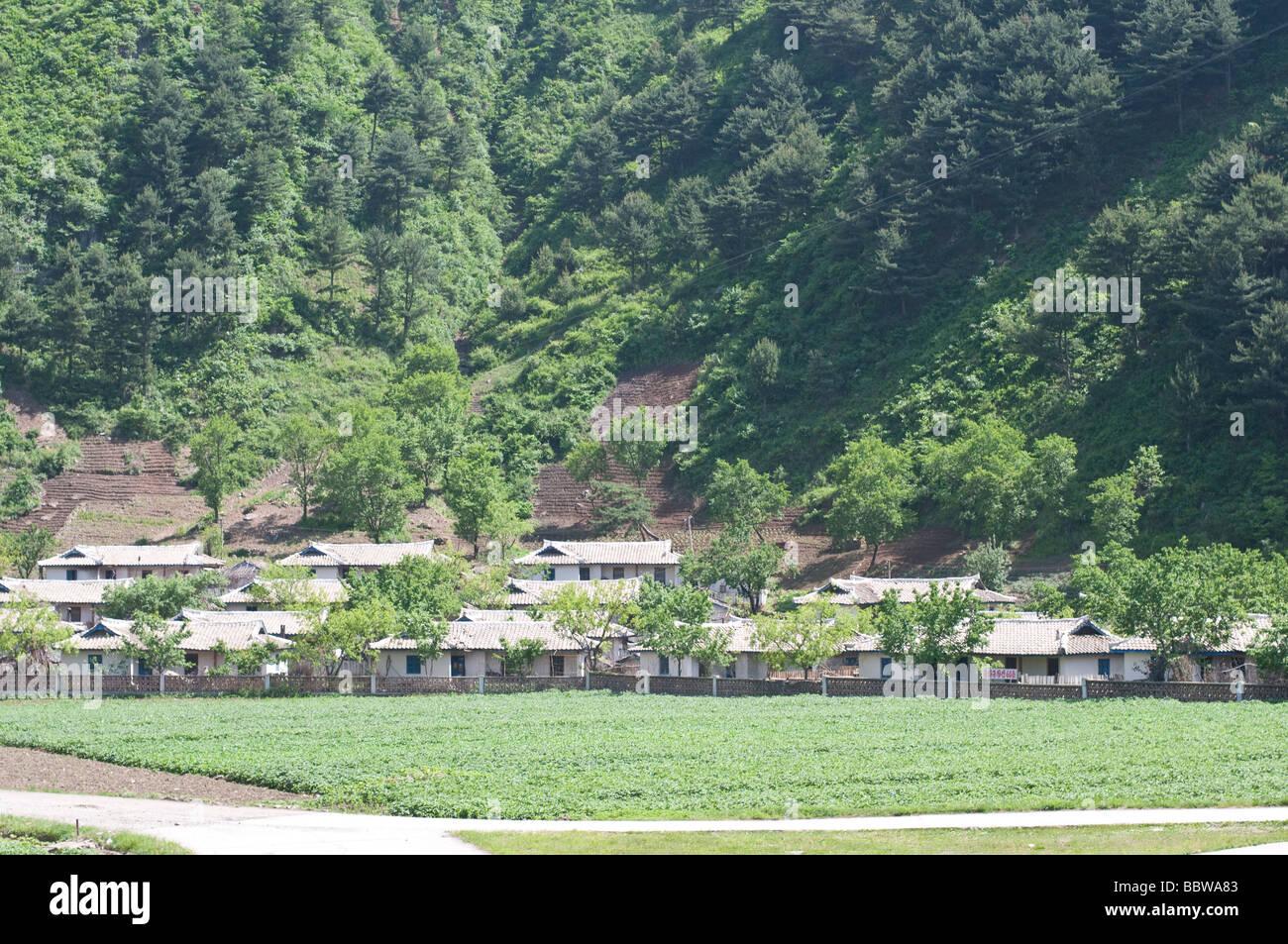 Campagna con campi di riso intorno Wonsan città in Corea del Nord Immagini Stock