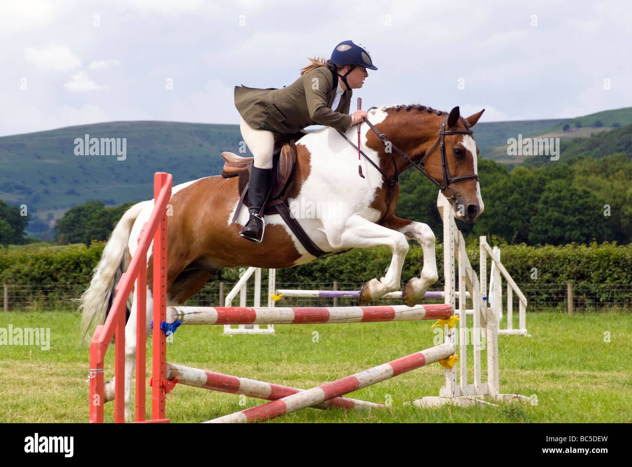Donna pilota in una show jumping concorrenza a Pandy visualizza, nr Abergavenny, Wales, Regno Unito. Brown & Immagini Stock