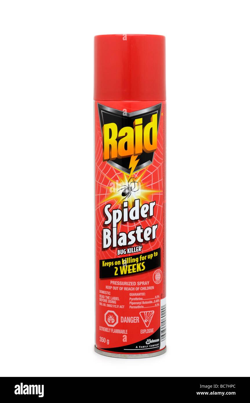 Raid Spider spray killer Immagini Stock