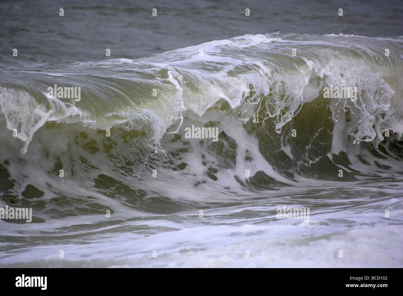 Wave. Devon Immagini Stock