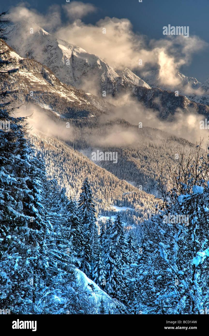 Wntertime nella valle del Mortirolo (Stelvio Nat. Confine del parco). Abete rosso e larice europeo foresta. Immagini Stock