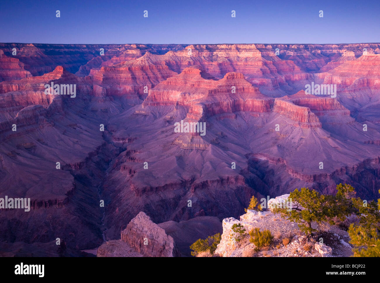 Stati Uniti d'America, Arizona, Grand Canyon, dal punto Pima Immagini Stock