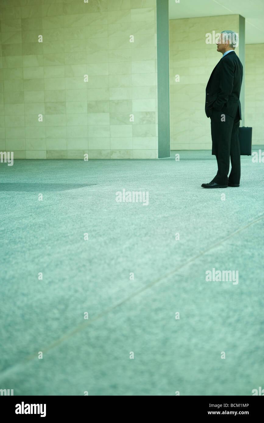 Imprenditore in piedi, valigetta di contenimento, a piena lunghezza e vista laterale Immagini Stock