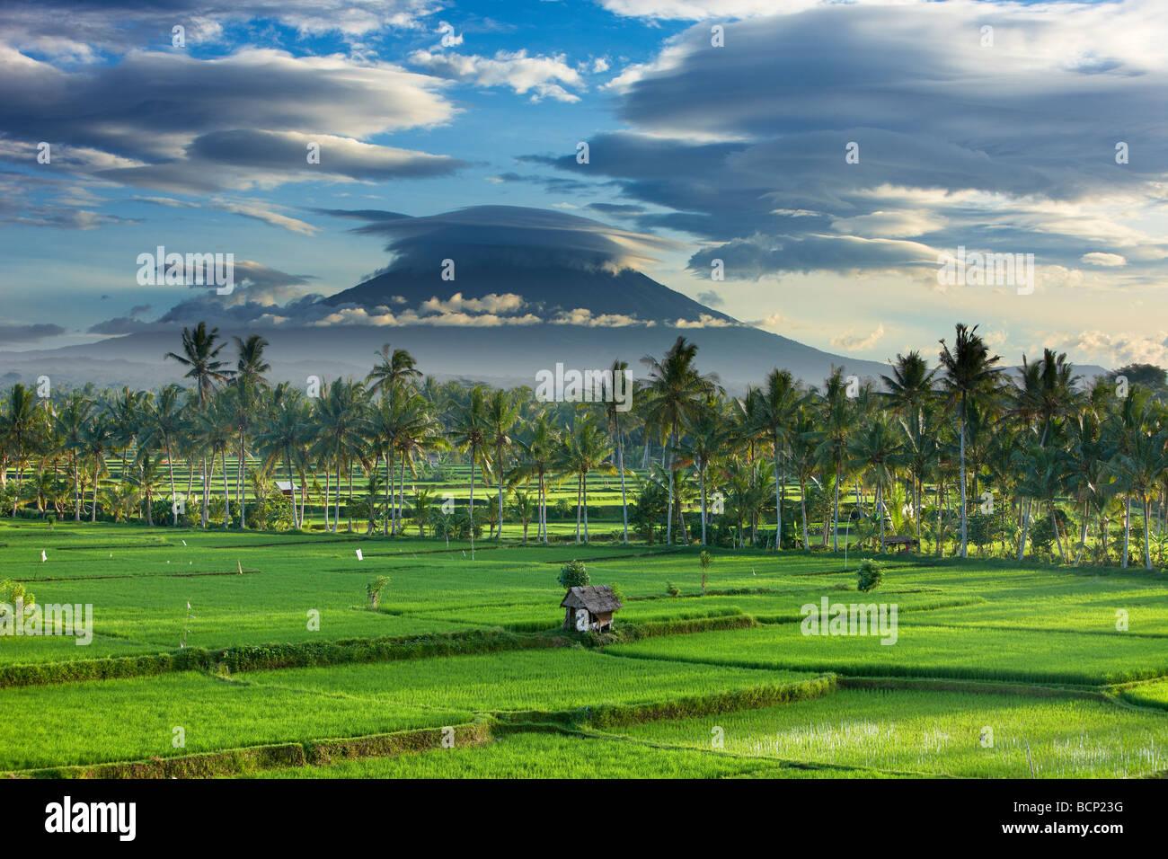 Un drammatico cielo sopra il picco vulcanico di Gunung Agung e i campi di riso, nei pressi di Ubud, Bali, Indonesia Immagini Stock