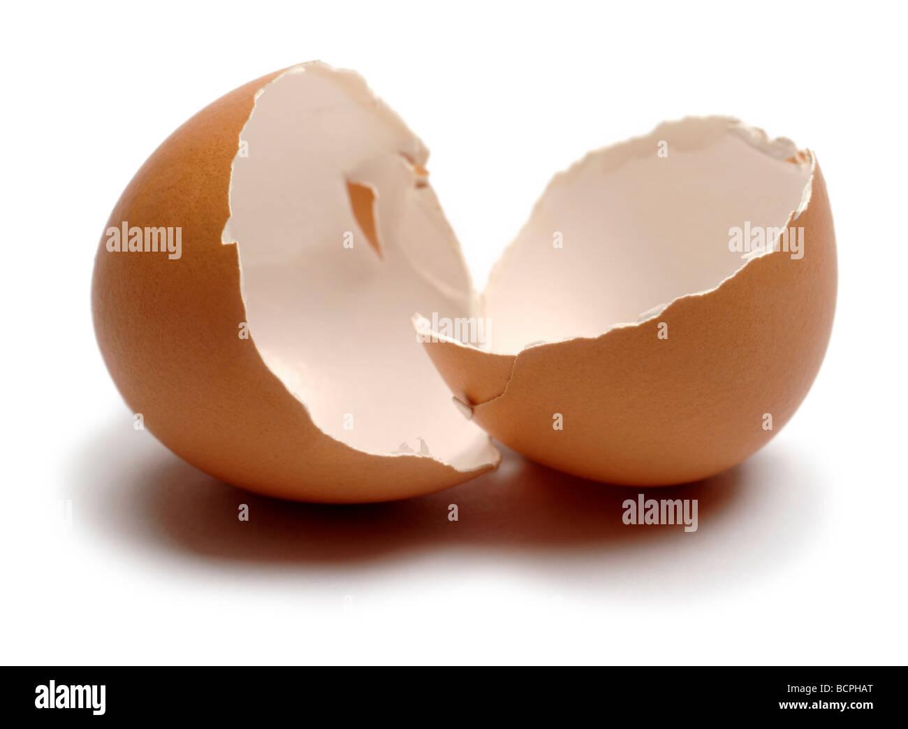 Guscio d'uovo Immagini Stock