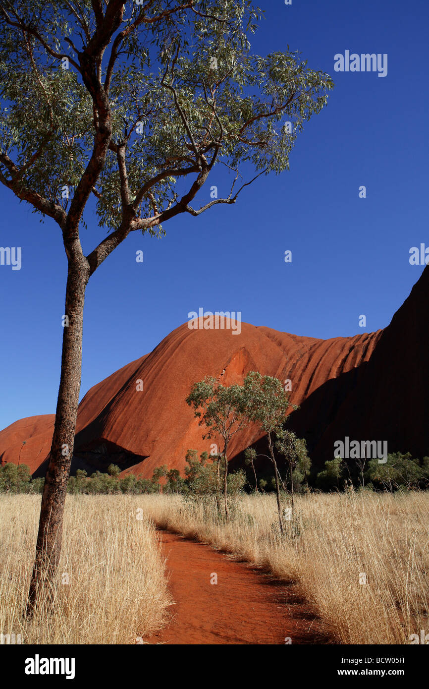 Uluru walking trail Australia centrale Foto Stock