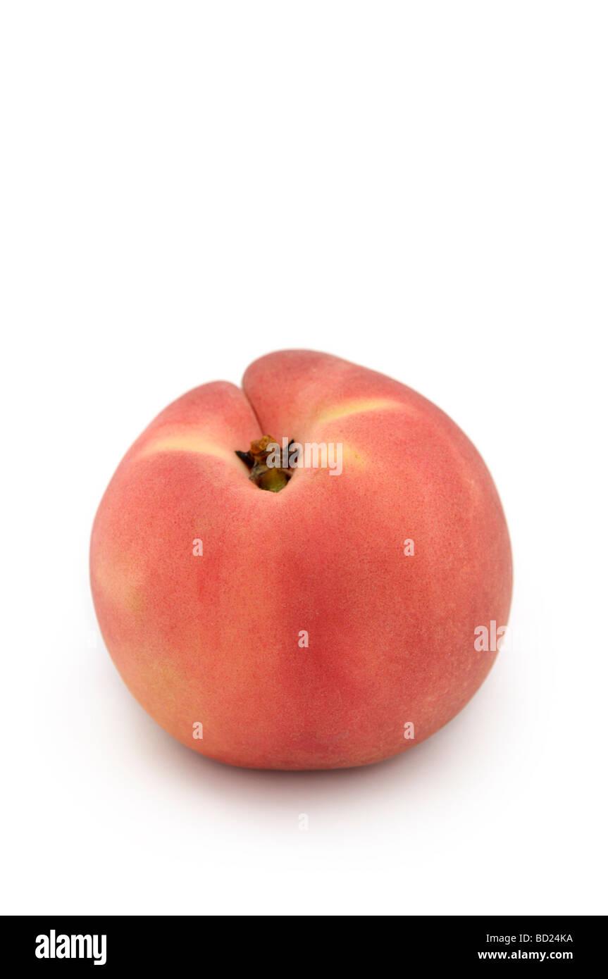 Pesco bianco, bianco-fleshed Peach (Prunus persica) Immagini Stock