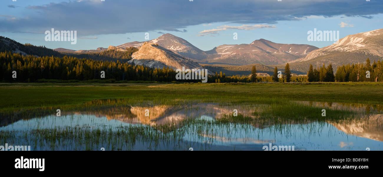 La riflessione del monte Dana nel campo inondato Tuolumne Meadows Yosemite National Park in California Immagini Stock