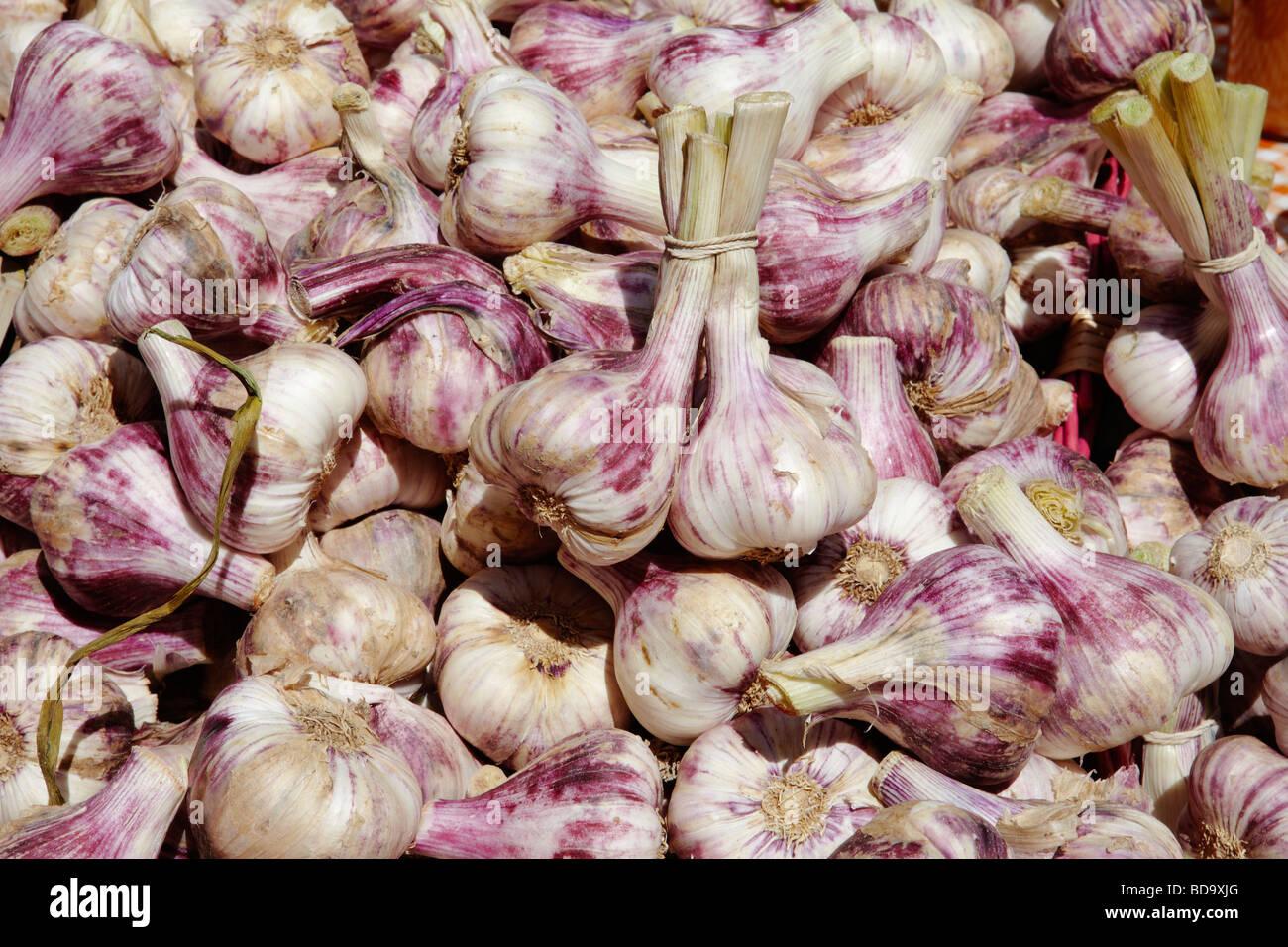 Stretto colpo di aglio per la vendita su un mercato in stallo Immagini Stock