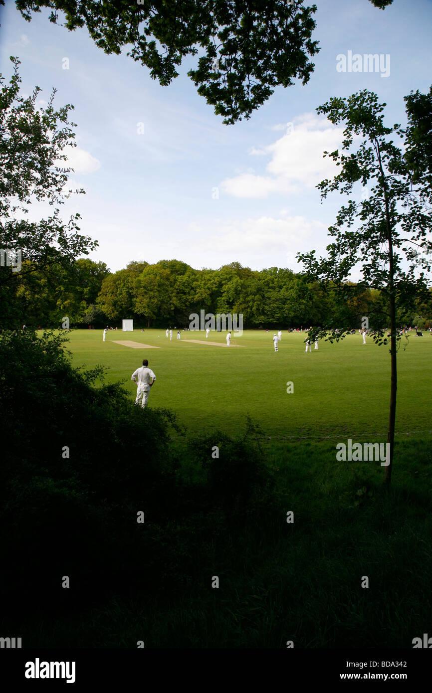 Gioco di cricket a Highgate Woods, Highgate, London, Regno Unito Immagini Stock
