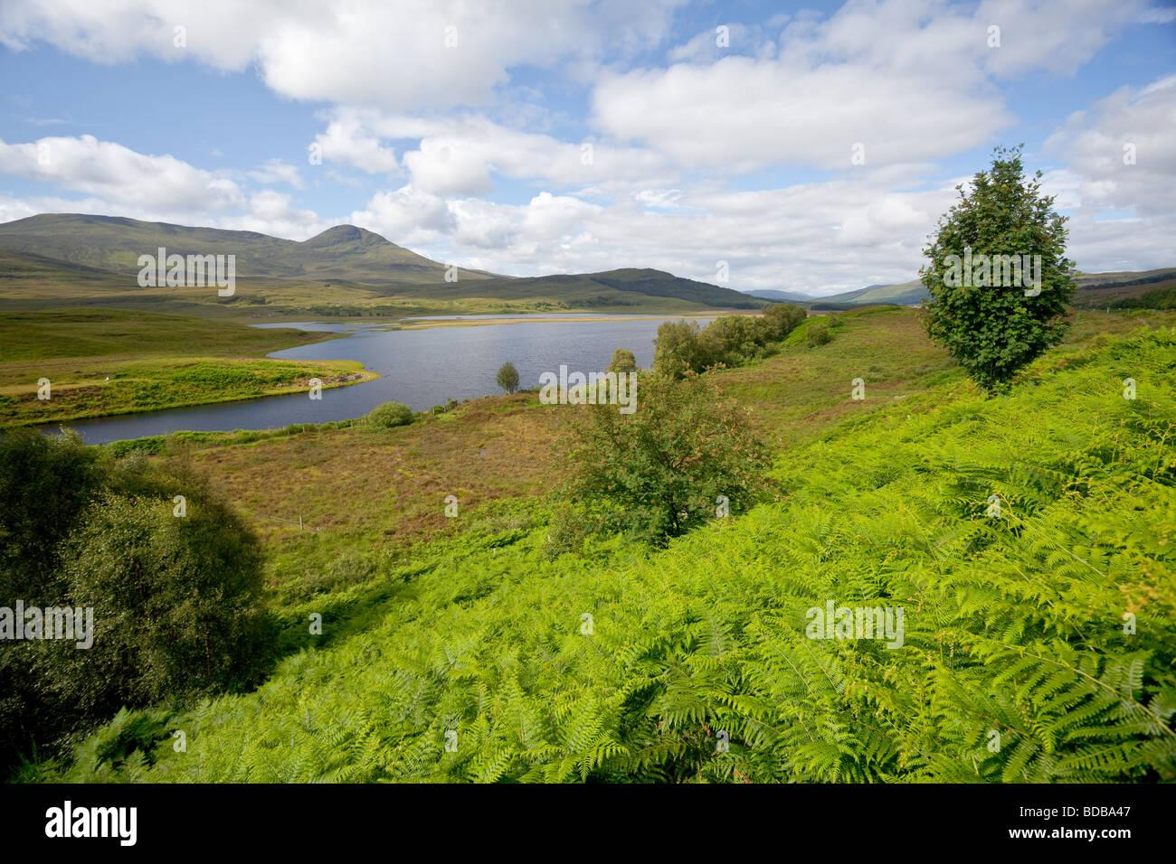 Loch Luichart nelle Highlands della Scozia Foto Stock