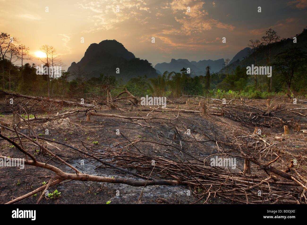 Slash e bruciare; de-forestazione nr Vang Vieng, Laos Immagini Stock