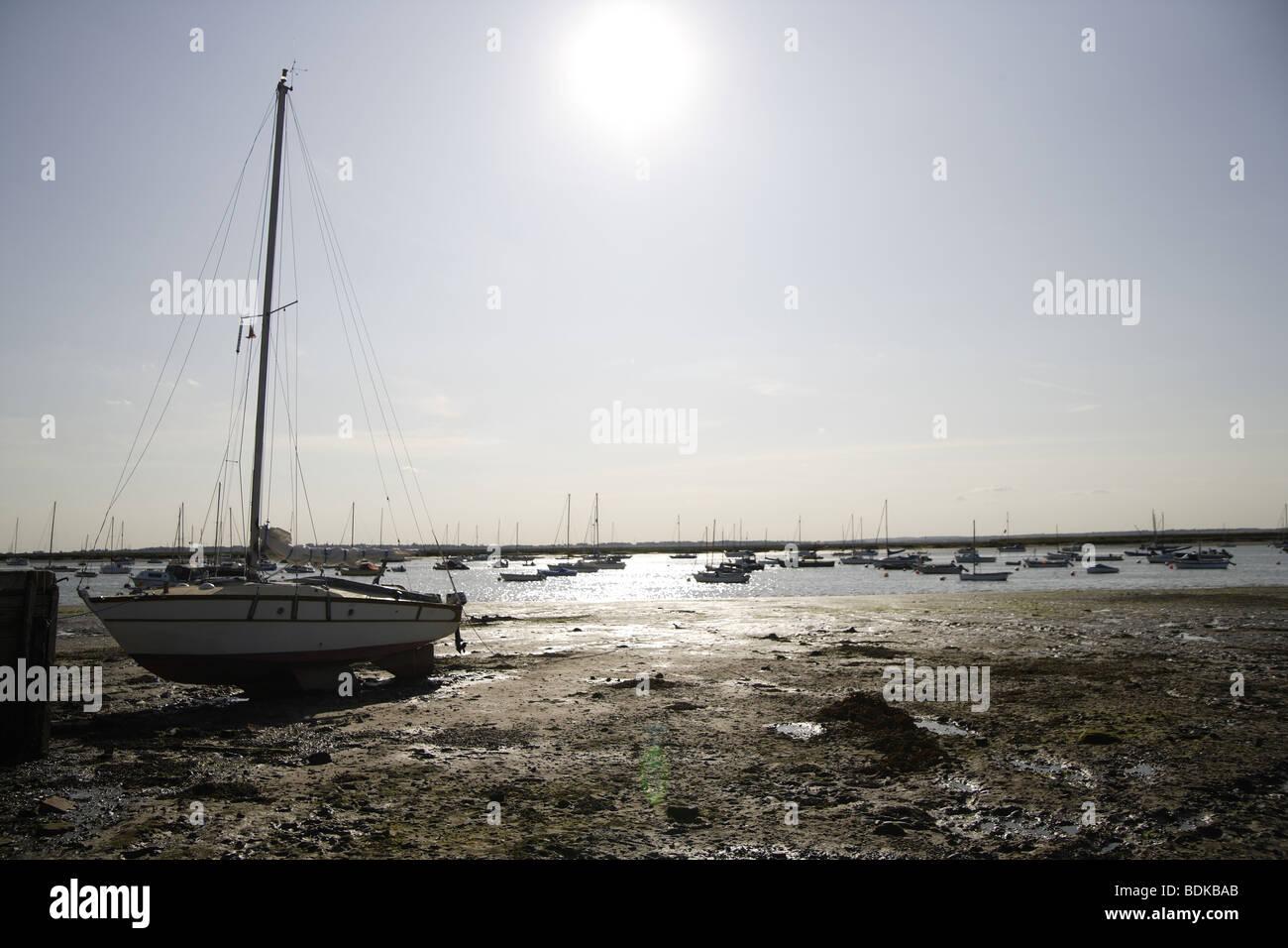 Nel tardo pomeriggio di sole sulla mersea isola nel paesaggio di bassa marea di fango Immagini Stock